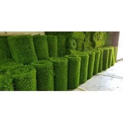 Yeşil bahçe duvarı