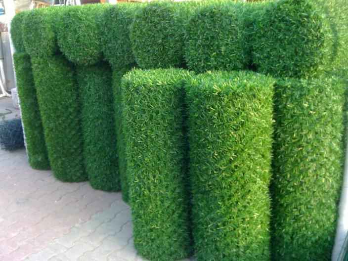 istanbul çim çit üretim